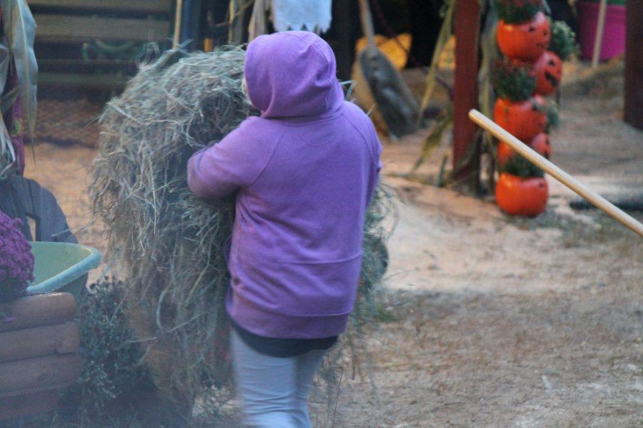 Behind the scenes at the Deerfield Fair