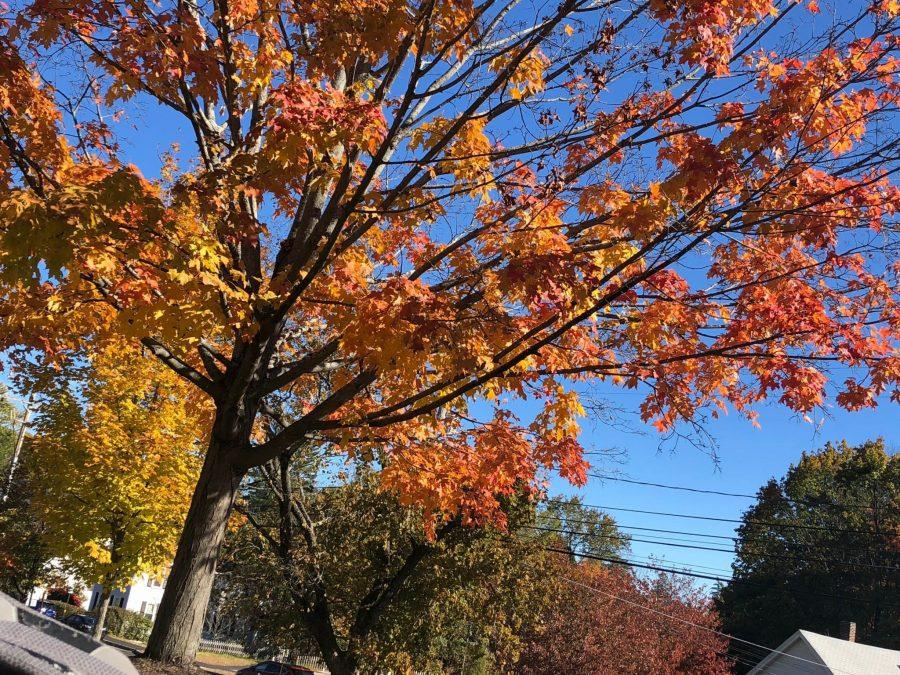 Fall+foliage+returns+to+Merrimack+Valley