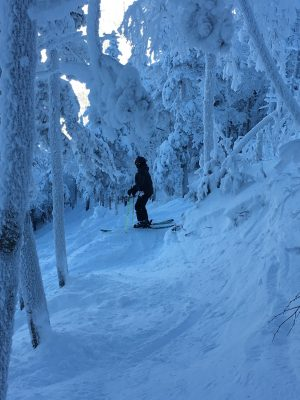 Cannon backcountry skiing